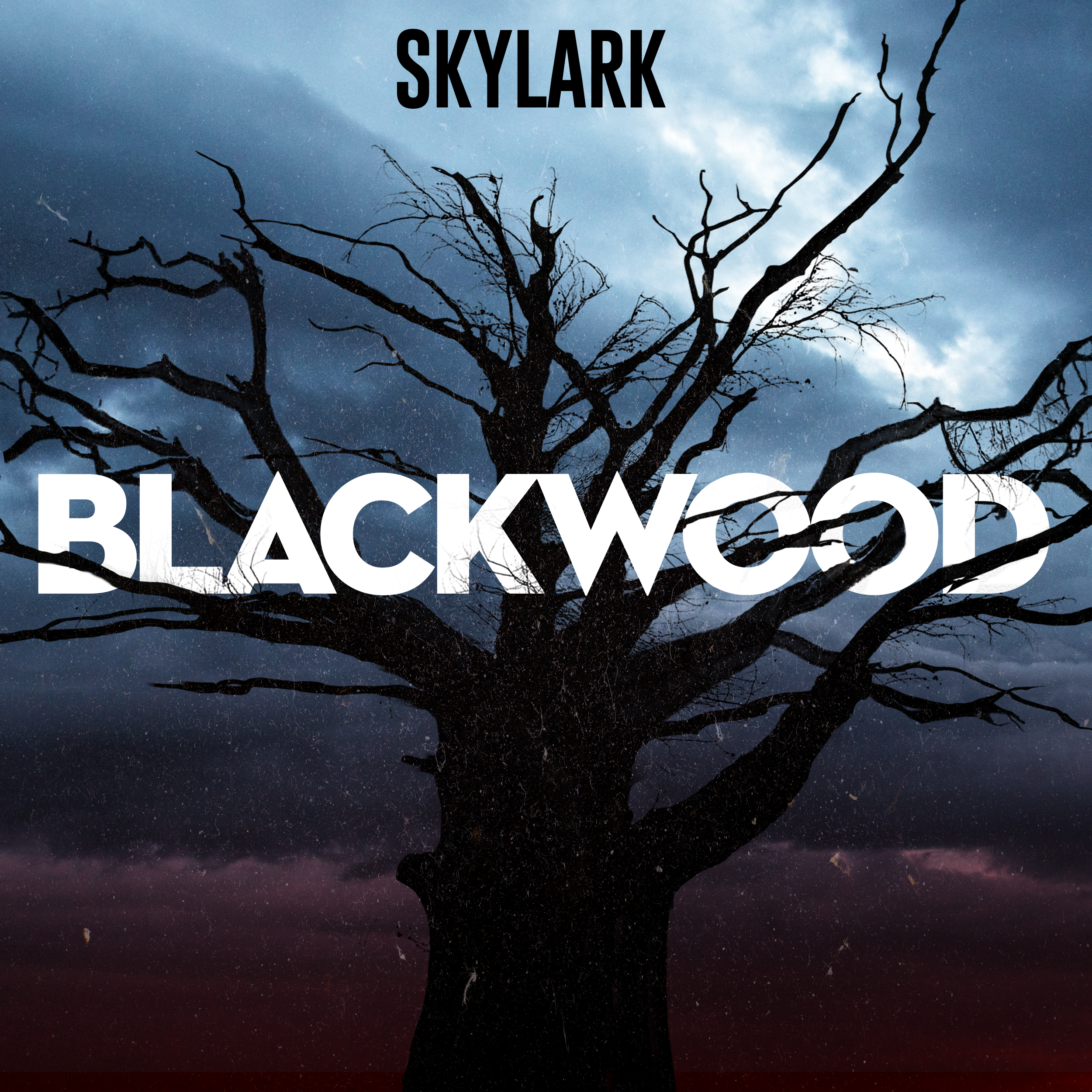 As the writer of  Blackwood , I was responsible for generating not only all six scripts, but ensuring they were produced with ad breaks, and a particular run-time in mind.  My responsibilities stretched beyond writing, as I participated in the recording process at  Unbridled Sound , ensuring that any creative decisions were made in the spirit of the series. I was also responsible for overseeing the post processing on each episode, providing notes on each cut to our director, producer, and sound studio.  I oversaw the ad placement and PR processes leading up to launch, and watched as we debuted at #1 on Apple Podcast's Art Category.