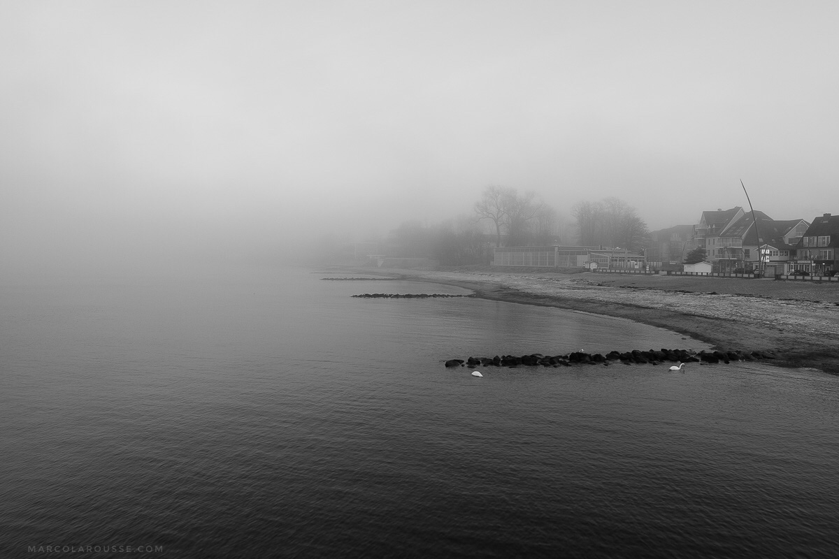 Off Season - Swans and Fog