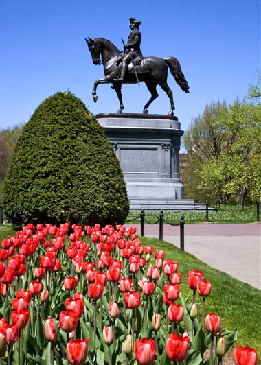Boston Commons Georges Washington : Greater Boston Convention & Visitors Bureau.jpg