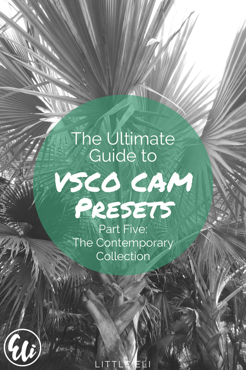 The Ultimate Guide to VSCO Cam Presets: The Contemporary Collection - Little Eli