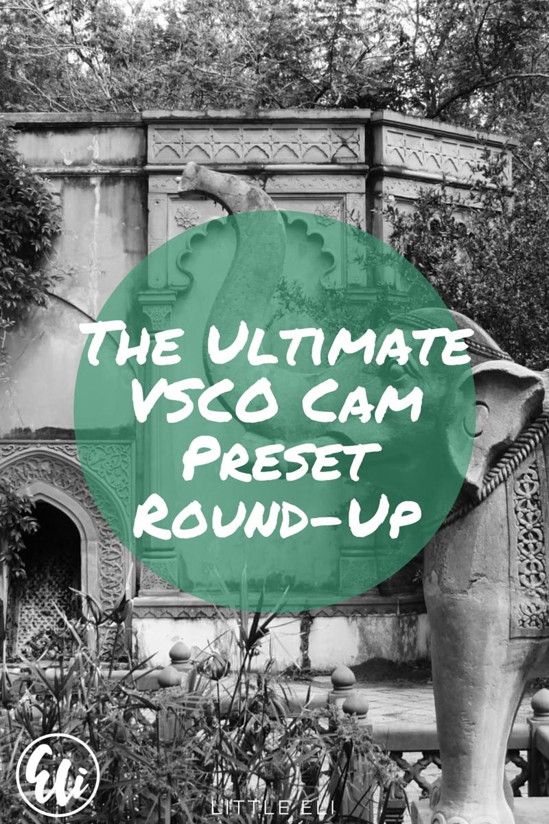 The Ultimate VSCO Cam Preset Recap - Little Eli