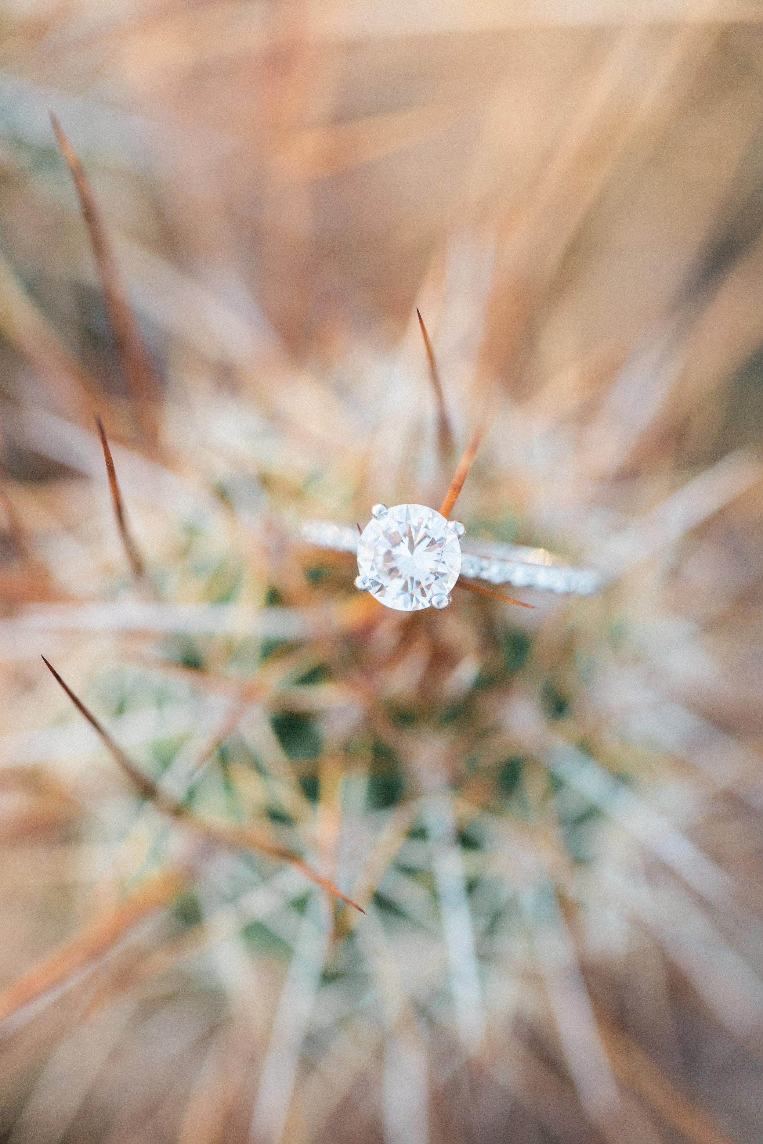 arizona-desert-engagement-brealyn-nenes