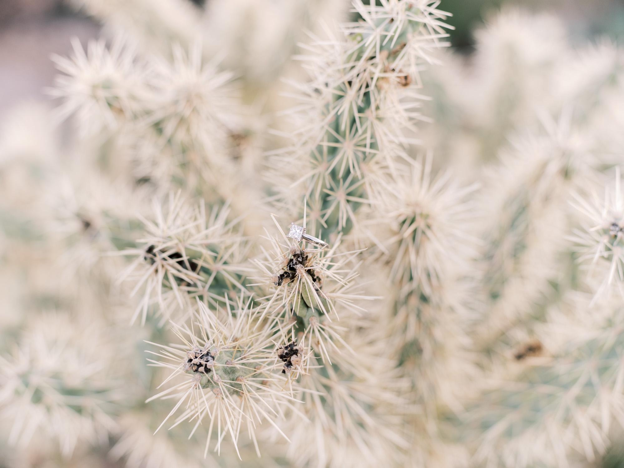 desert-scottsdale-engagement-photographer-brealyn-nenes-031.JPG