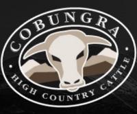 cobungra-logo.jpg