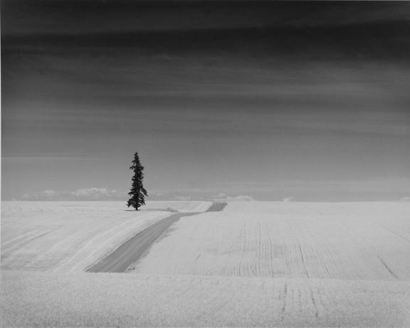 December Solitude
