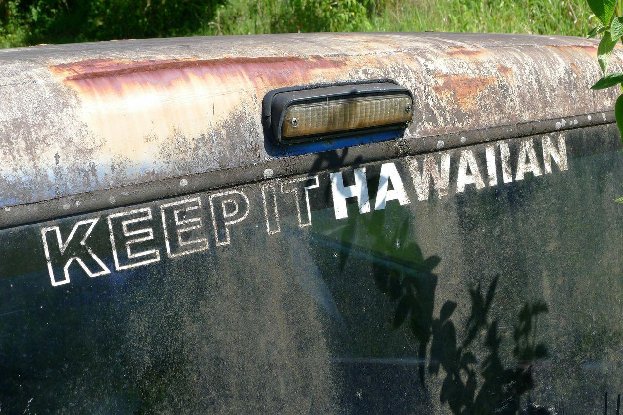 """Keep it Hawaiian 20"""" x 30"""""""