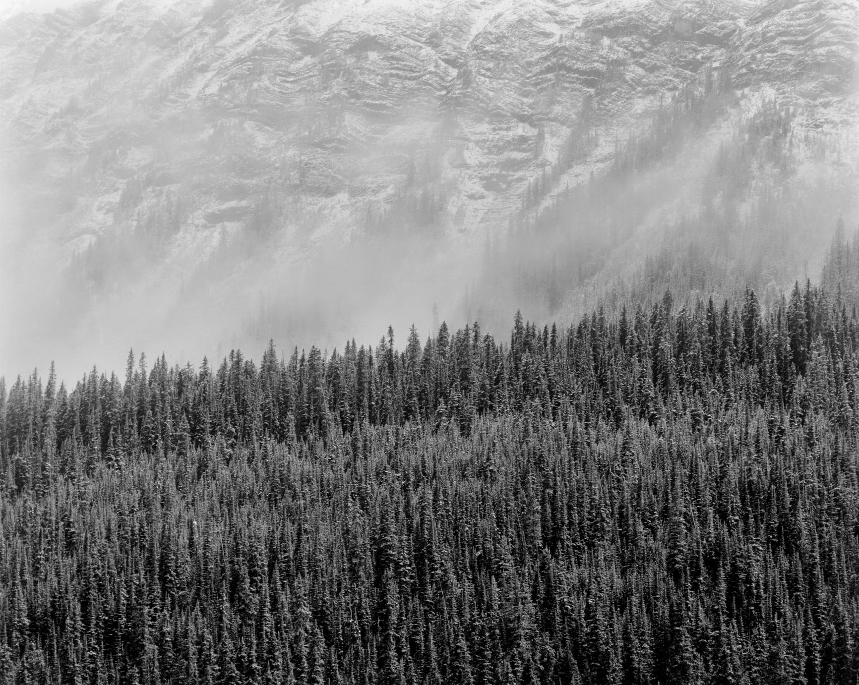 152002- Rockies