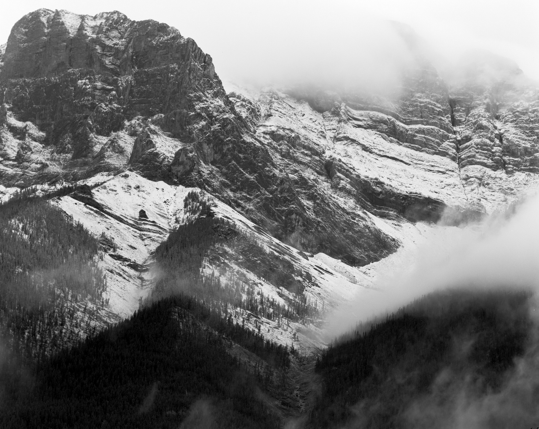 152101- Rockies