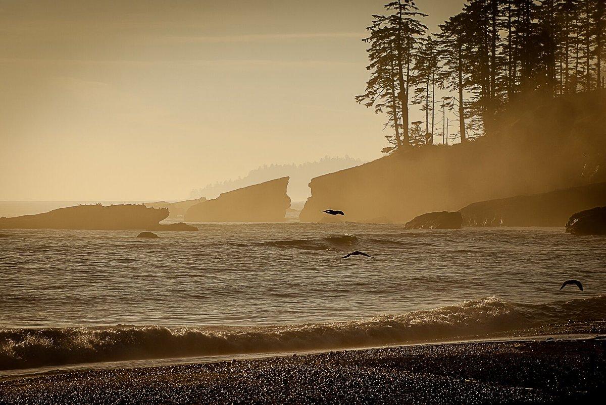 West Coast Dream