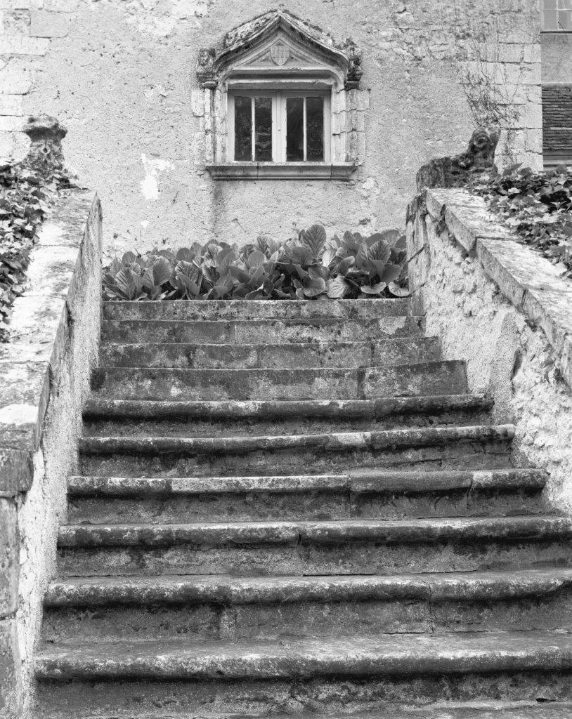 74704 Chateau Rye