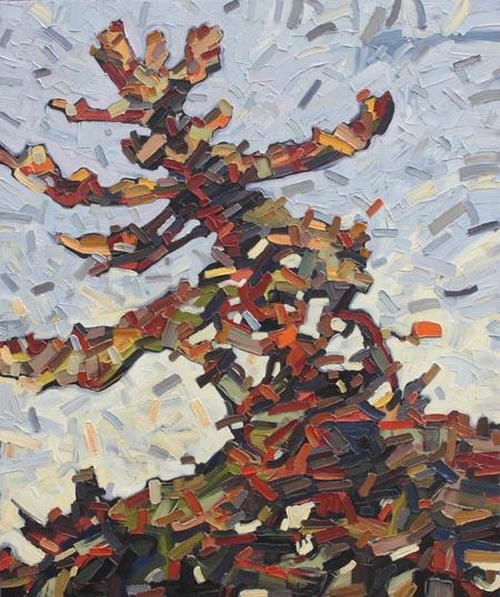 "Pine Portrait 7 - 36""x30"""
