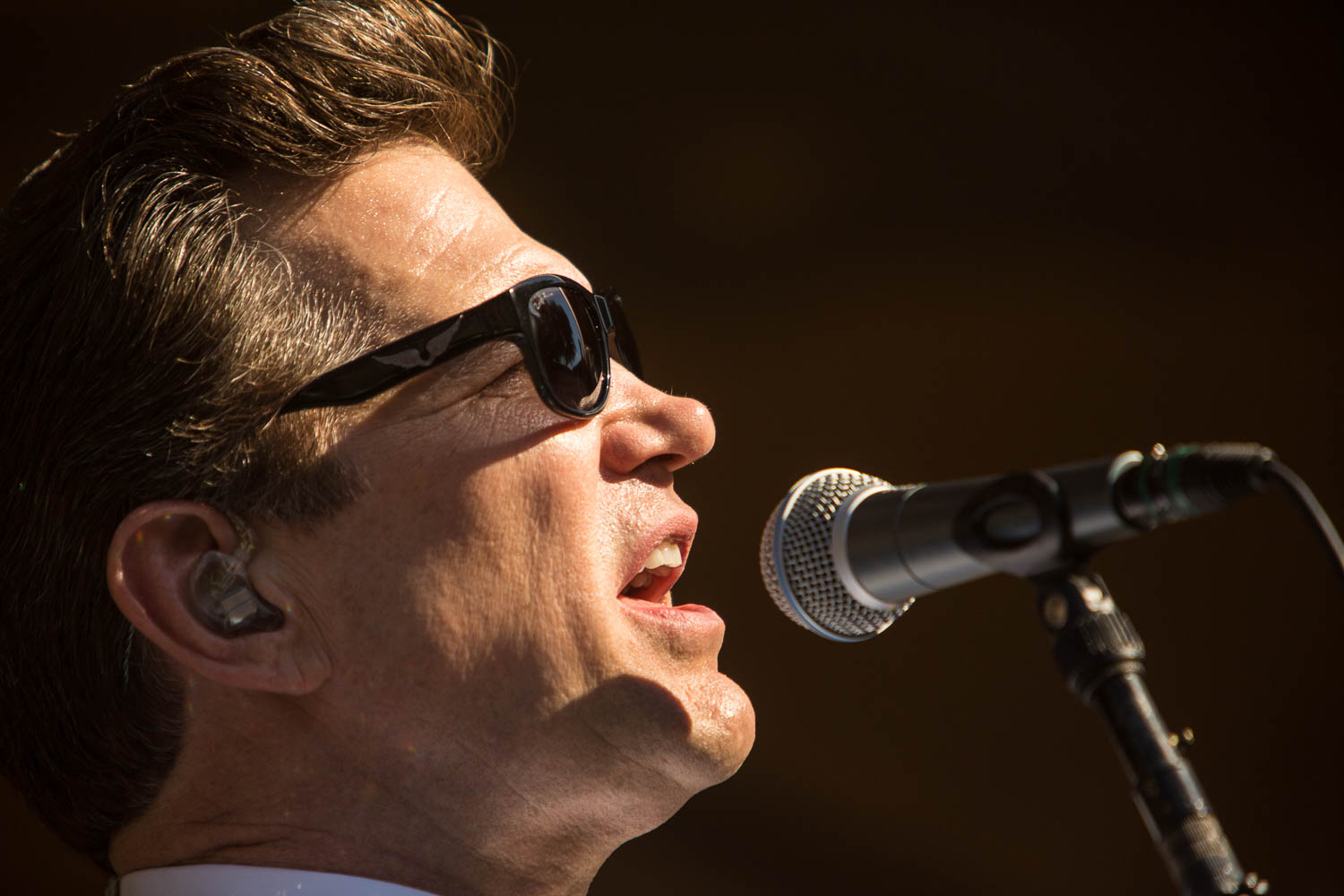 Rodney Strong Concerts 2014 2 Chris Isaak-3329.jpg