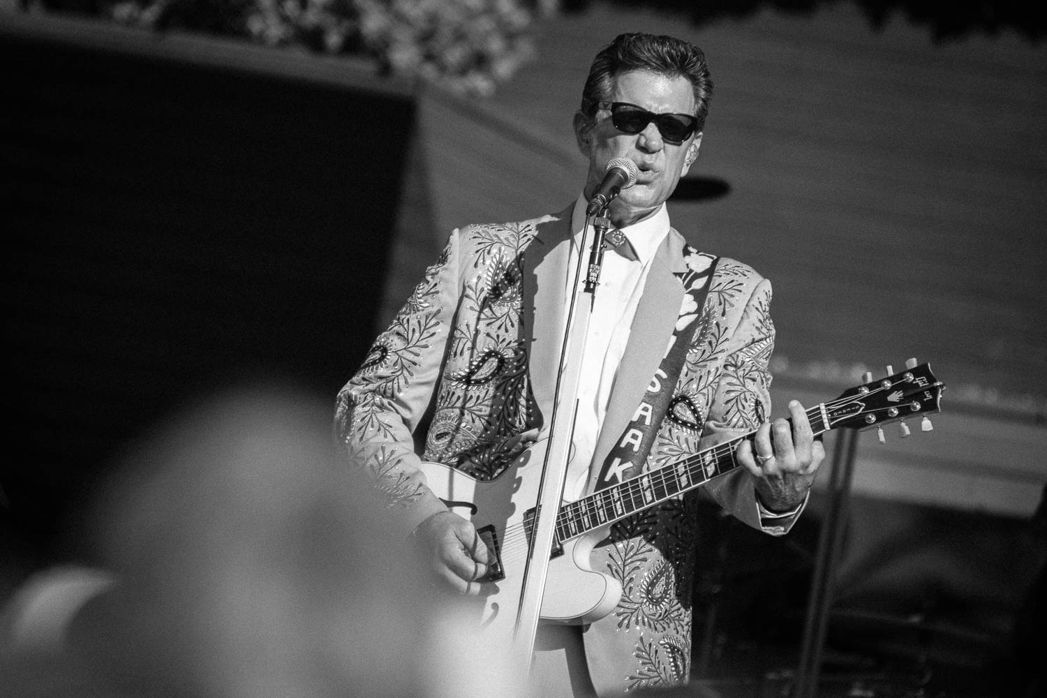 Rodney Strong Concerts 2014 2 Chris Isaak-3471.jpg