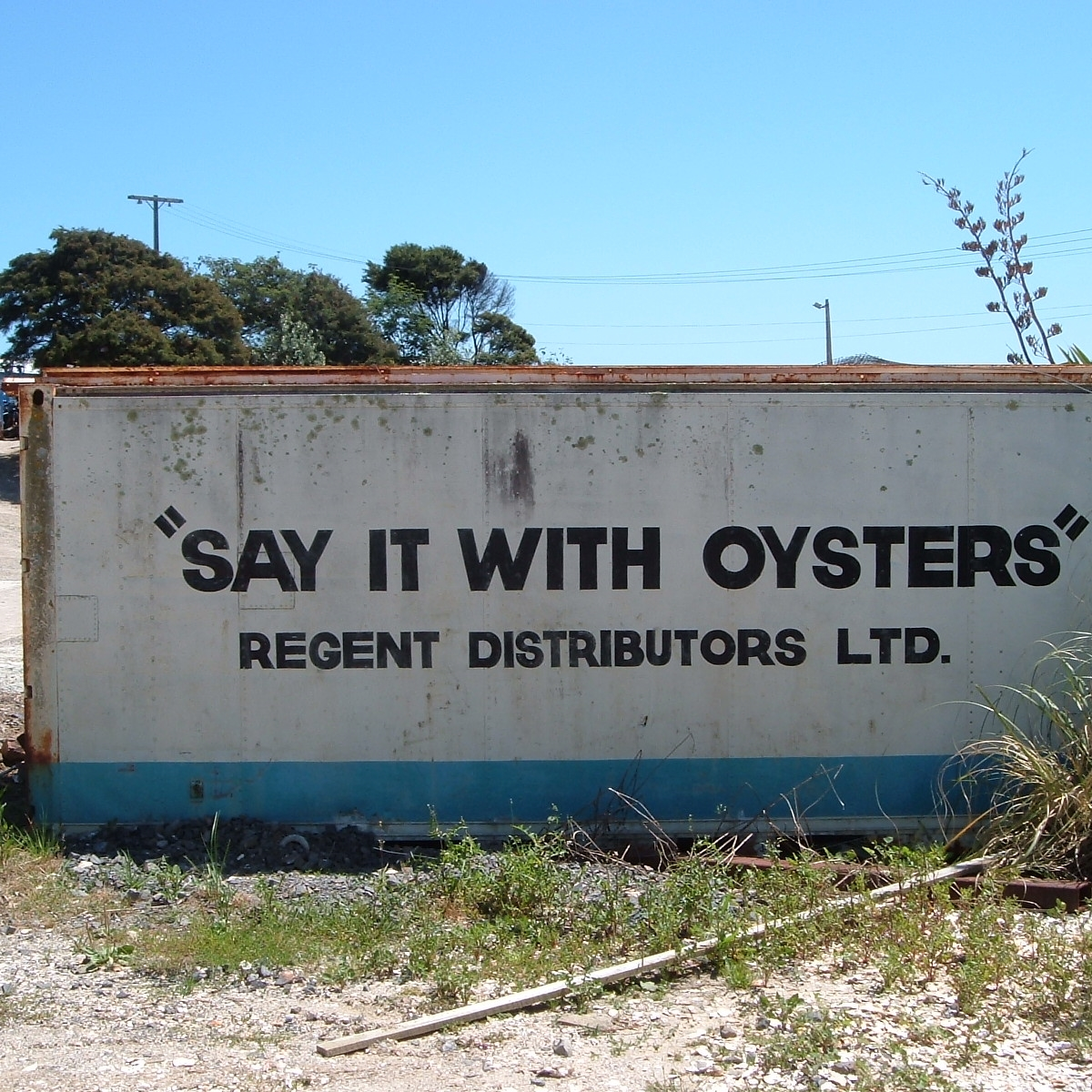 say it with oysters.JPG