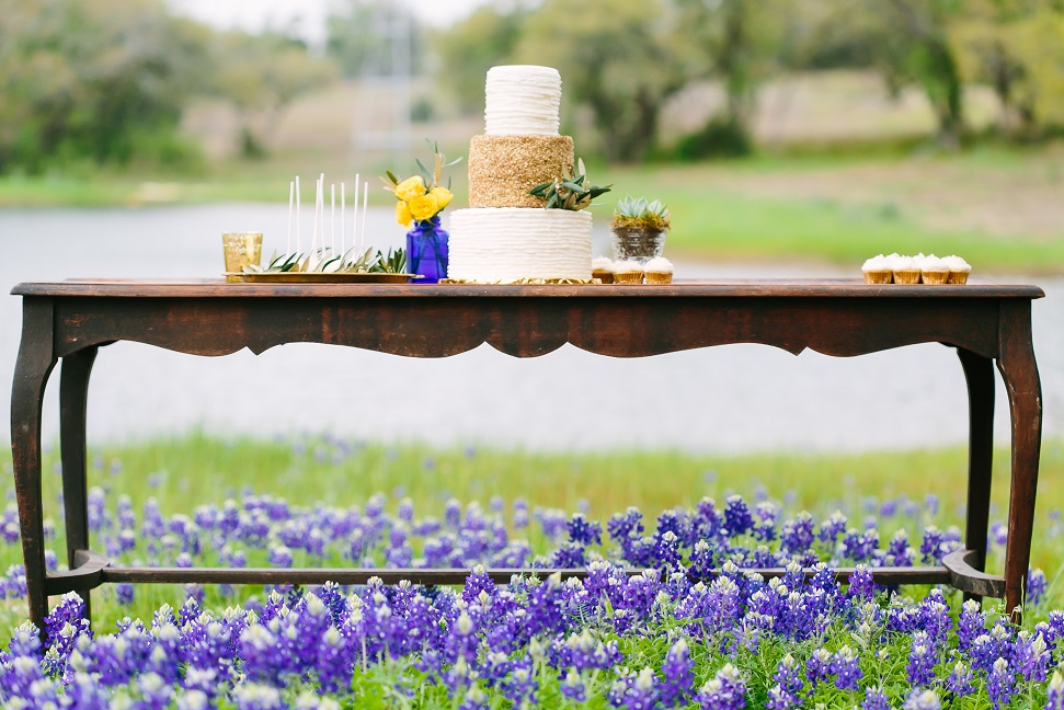 Gold Textured Cake Table over Bluebonnets