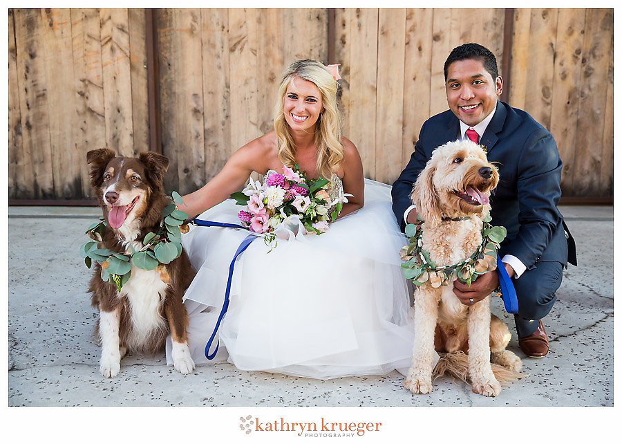 Bride, groom and dogs with wreath collars