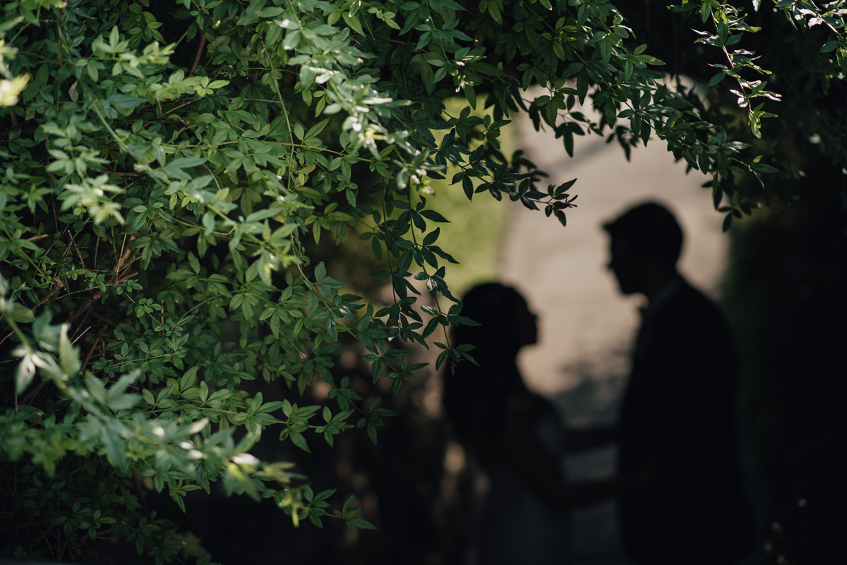 Bride and groom silhouette in bushes