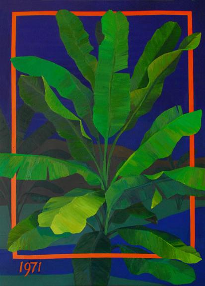 1971 Musaceae