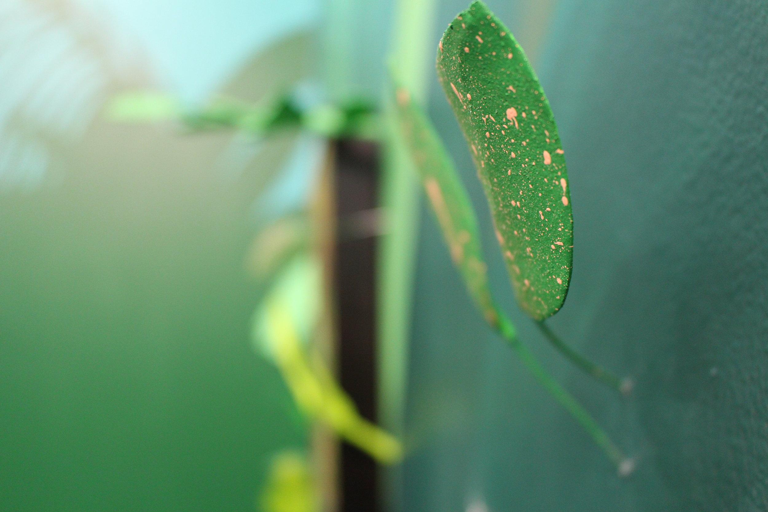 Secrets of Leaves - speckled leaf close up.JPG