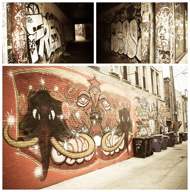 Beautiful wall art throughout downtown Ann Arbor.