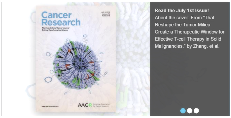 Fan Zhang,Sirkka B.Stephan,Chibawanye I.Ene,Tyrel T.Smith,Eric C.Holland and Matthias T.Stephan.Nanoparticles That Reshape the Tumor Milieu Create a Therapeutic Window for Effective T-cell Therapy in Solid Malignancies.  Cancer Research.  July 2018.