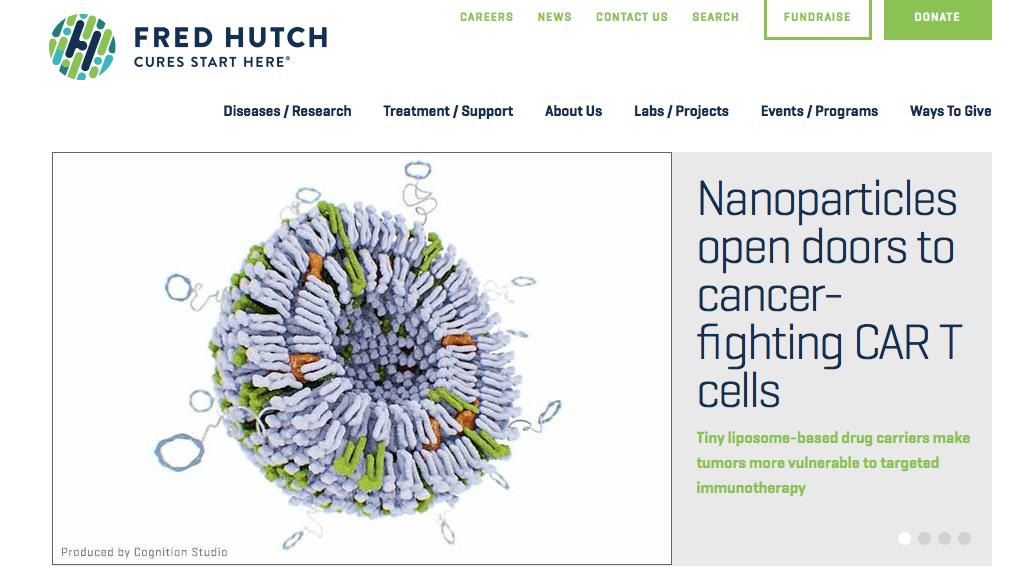 liposome-nanoparticles-tumors-vulnerable-immunotherapy.html