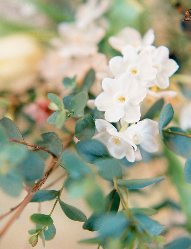 Taylor & Porter_The Garden Gate Flower Company Website_21.jpg