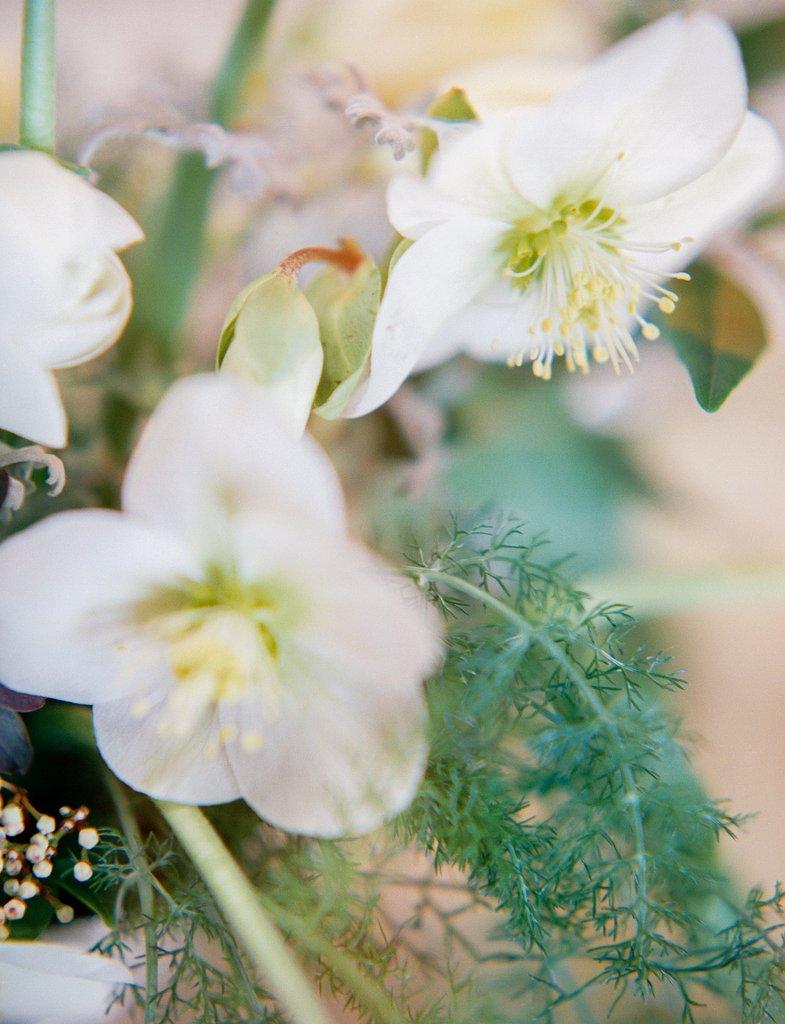 Taylor & Porter_The Garden Gate Flower Company Website_22.jpg