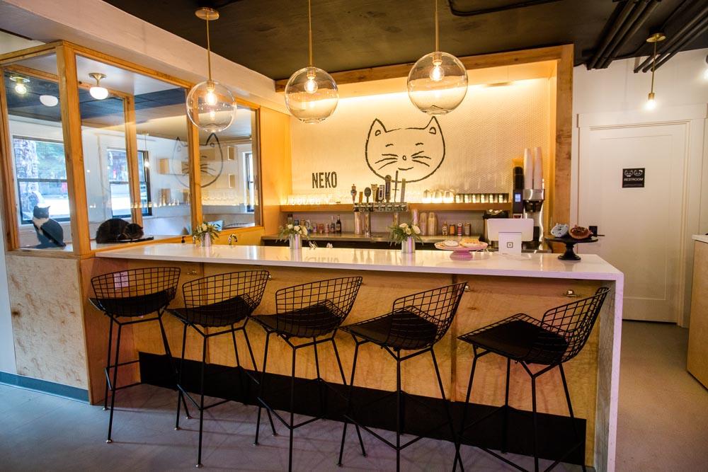 Pratt_Neko Cat Cafe_026.jpg
