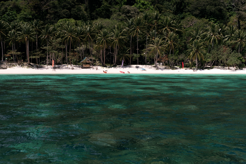 Papaya Beach.