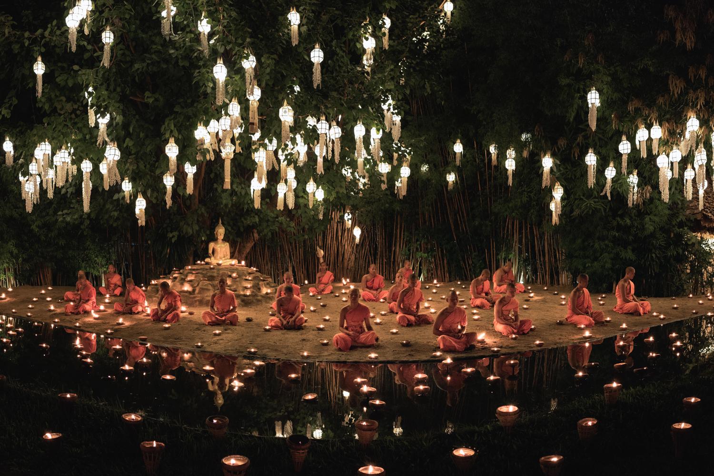 Twenty novice monks sit beneath a Bodhi tree during Loi Krathong Festival.