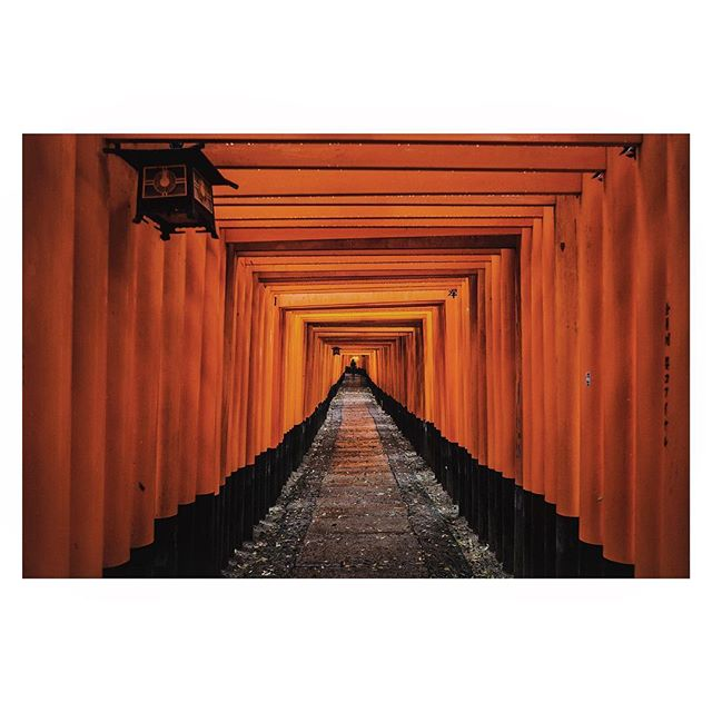 A woman walks through the rain at Fushimi Inari Shrine, a Shinto shrine in Kyoto. It is famous for its thousands of vermilion torii gates.