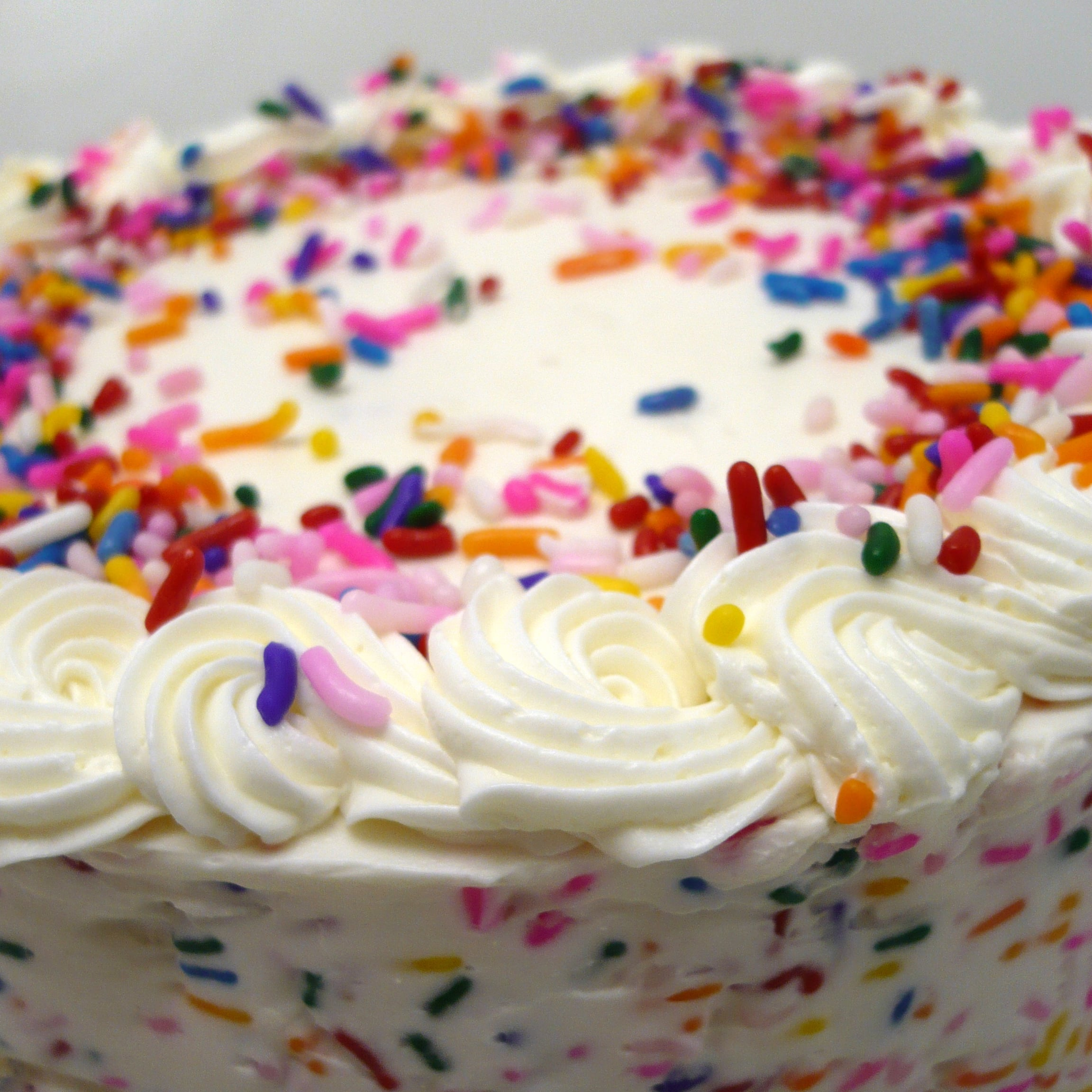 Confetti Cake Close.jpg