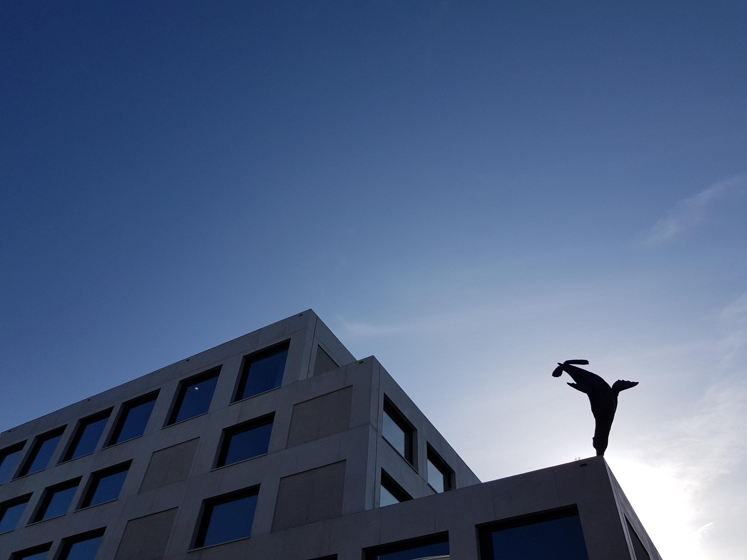 """Kunst und Bau: """"Seelöwe"""" von Urs Cavelti, Bild: hübschergestaltet GmbH  Das Erlenmattschulhaus in Basel ist bald fertig. Gemeinsam mit Luca Selva Architekten aus Basel haben wir ein Lichtkonzept über alle Räume entwickelt. Wir bedanken uns herzlich für die sehr angenehme Zusammenarbeit und freuen uns auf das tolle Ergebnis.  Projektdetails:  Neubau Primarschule und Sporthalle Erlenmatt Projektwettbewerb im offenen Verfahren Auftraggeber: Kanton Basel-Stadt"""
