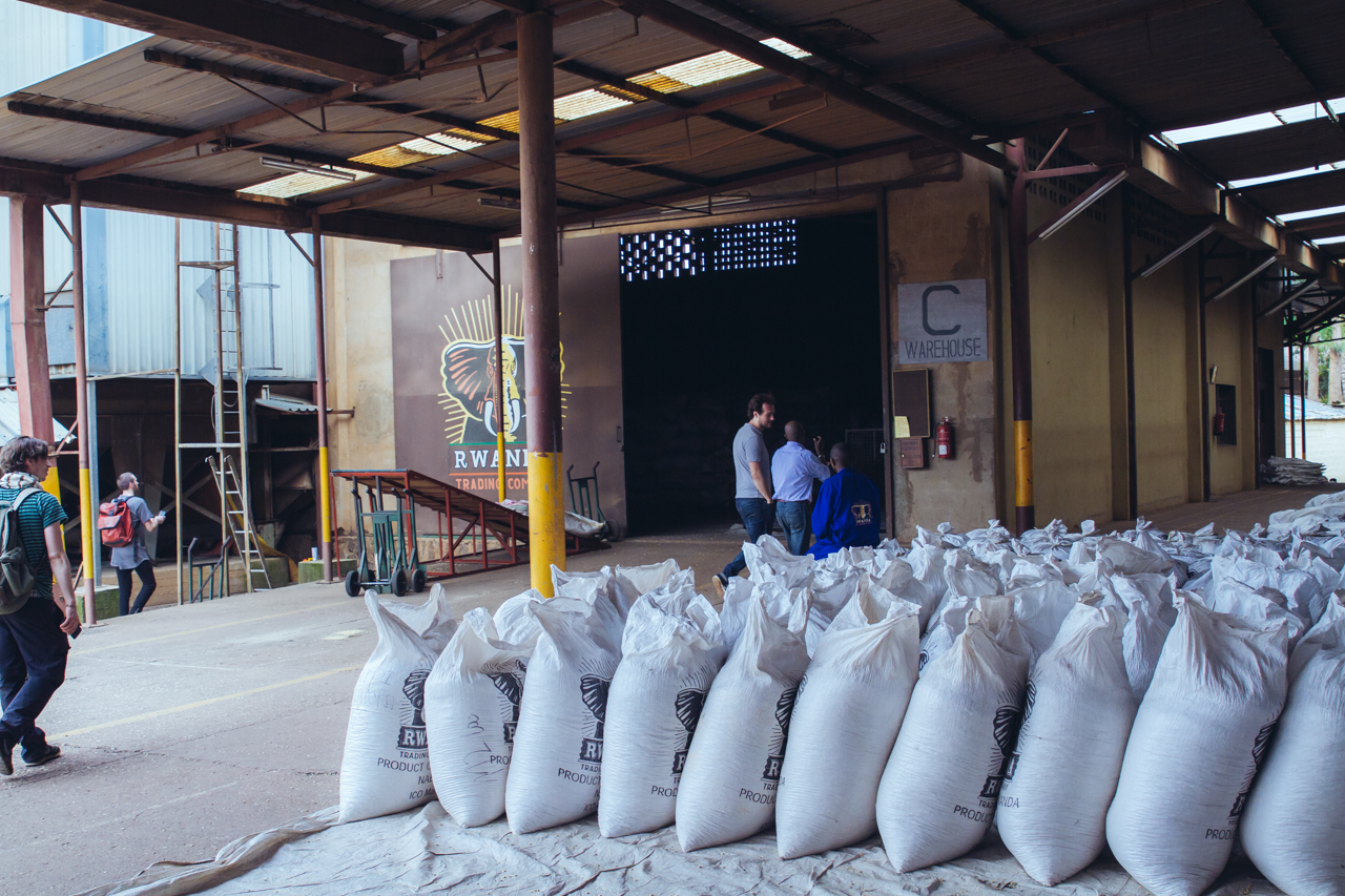 Iwacu and other parchment coffee arriving at RTC in Kigali