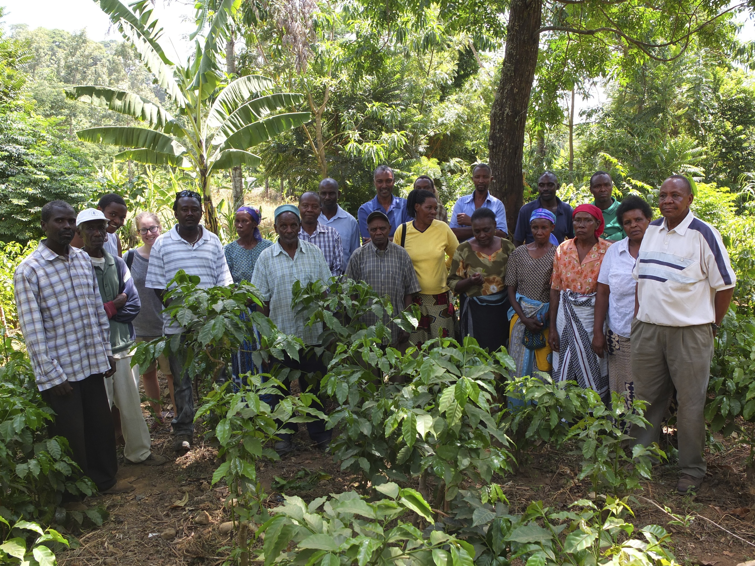 The whole group in the lush coffee fields close to the main office.