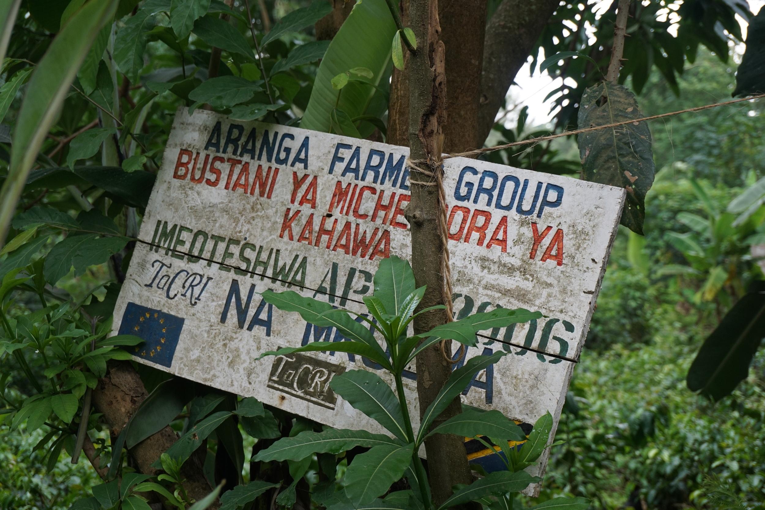 The Aranga group sign hidden in the shrubs.