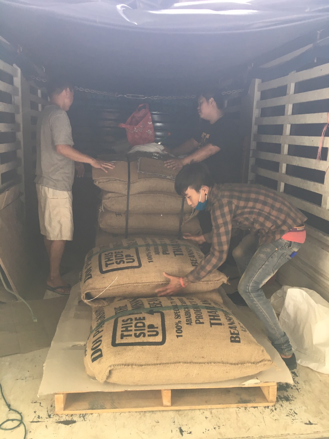 Our first export lot, picked, packed and sorted by the Doi Pangkhon farmers and delivered to us by Beanspire.