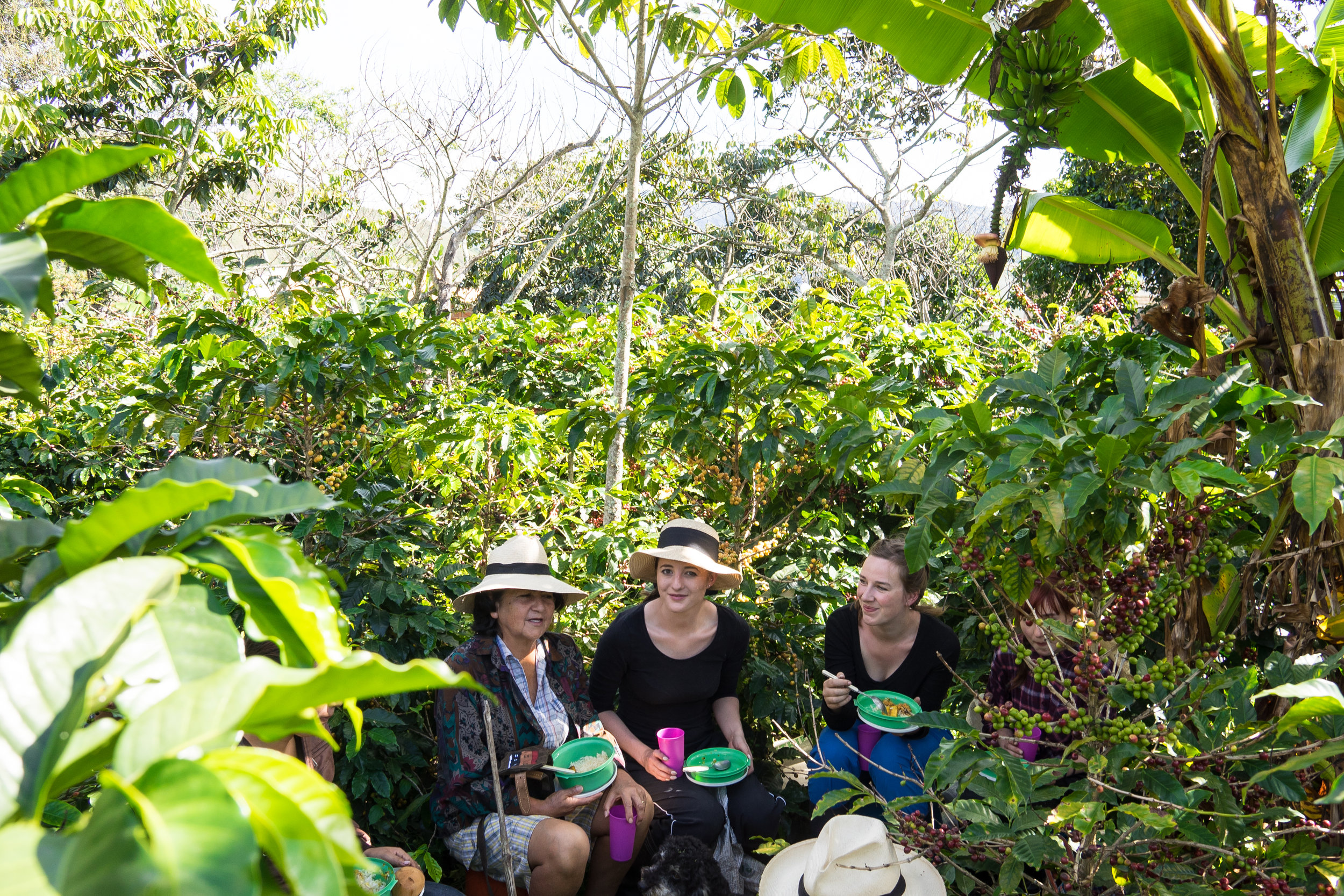 Doña Argote and field baristas taking a lunch break during picking season.