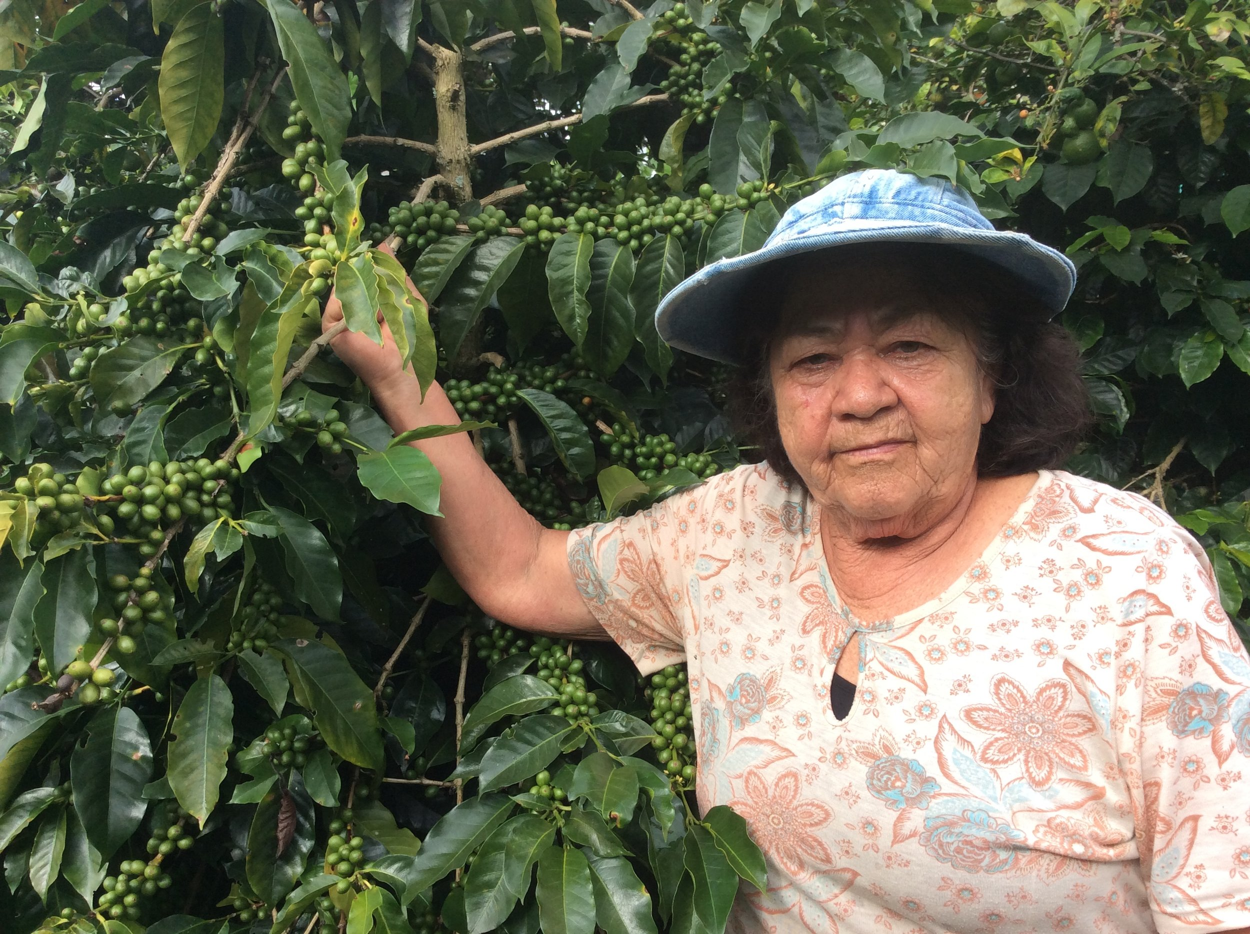 Sister of Adiela, an equal lover of good practices in the cultivation of coffee. Active and receptive to the recommendations for the improvement of the product.