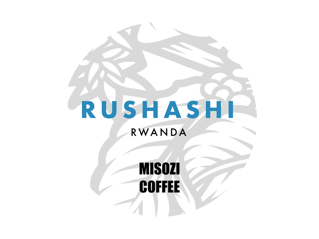 Rushashi Minazi Washed - notes of honey, black tea, nectarine. fully washed according to Abakundakawa's classic triple fermentation method.