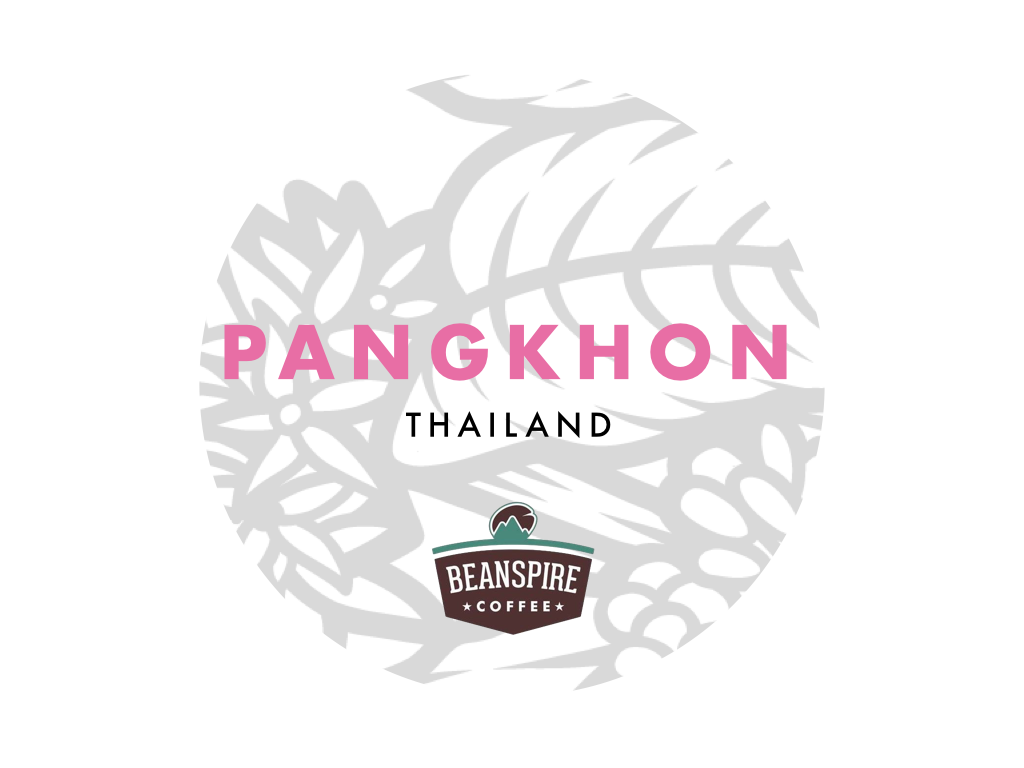 Pangkhon Natural - Highest scoring lot we have from Thailand. The coffee rests in the coffee pods for additional two months. This produces a complex, sweet, fully bodied with winey and berry character.