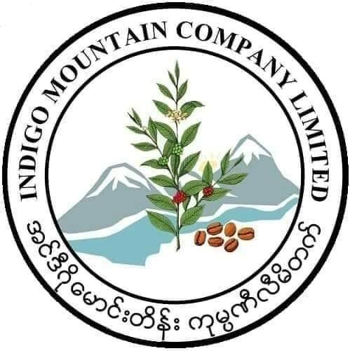 Indigo Mountain is the newly formed entity that helps Hopong coffee farmers' beans to market.