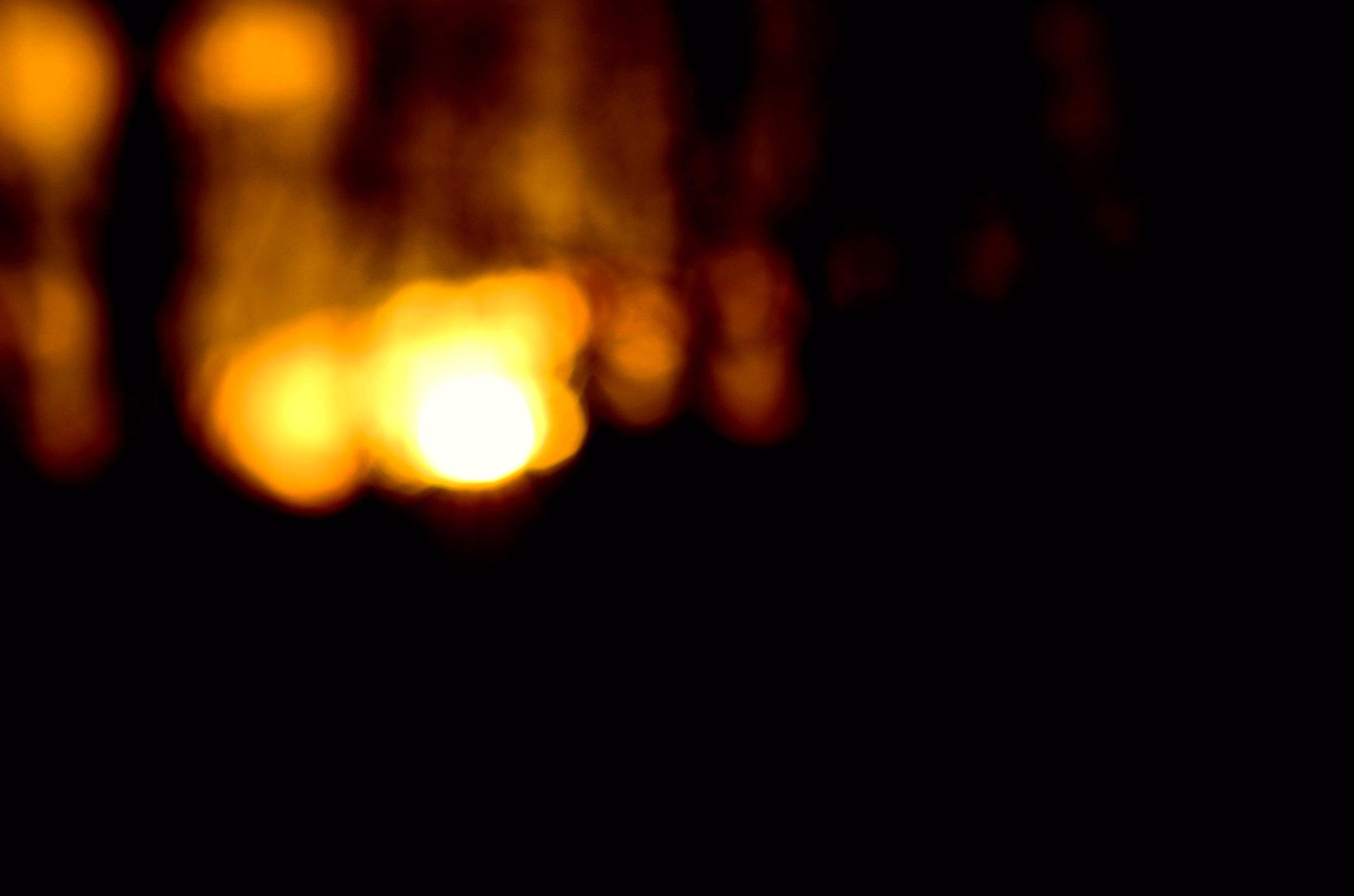 thelightinthetrees.JPG