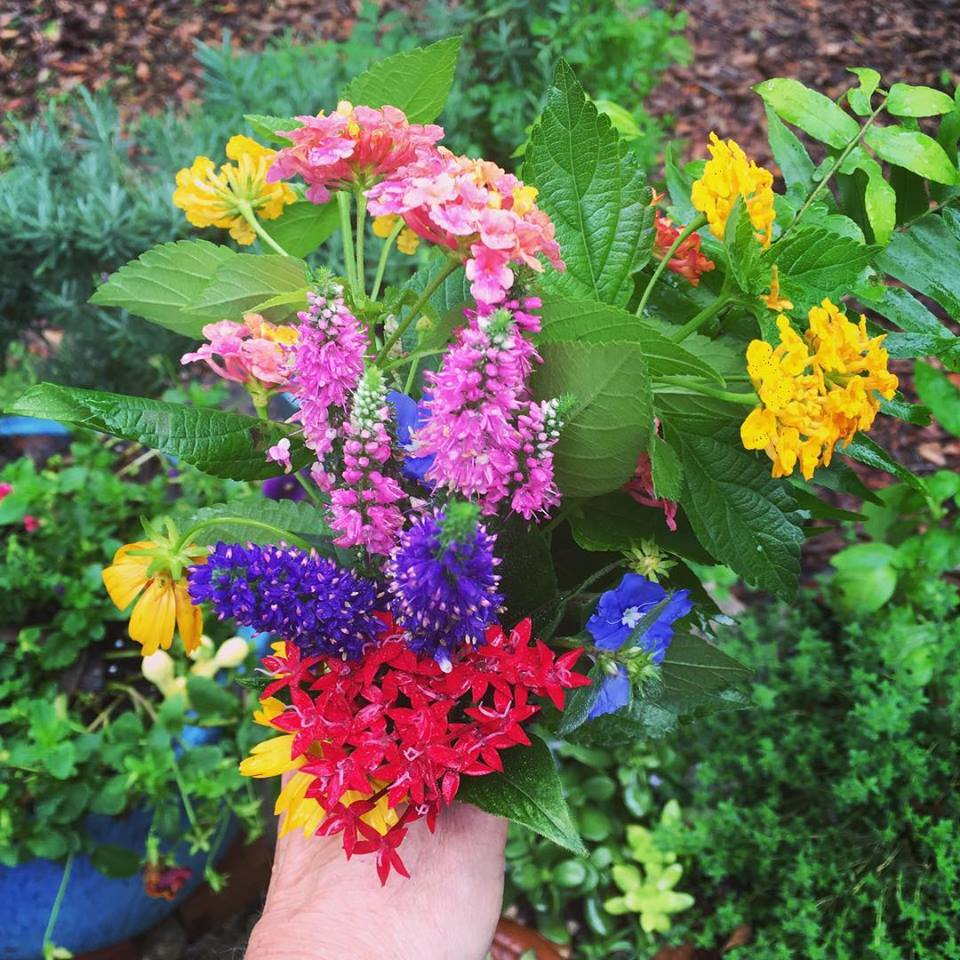 spring bouquet may 2018.jpg