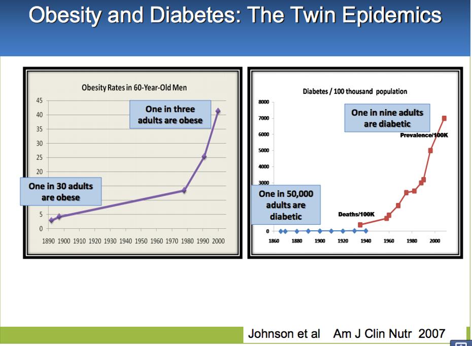obesitydiabetes.jpg