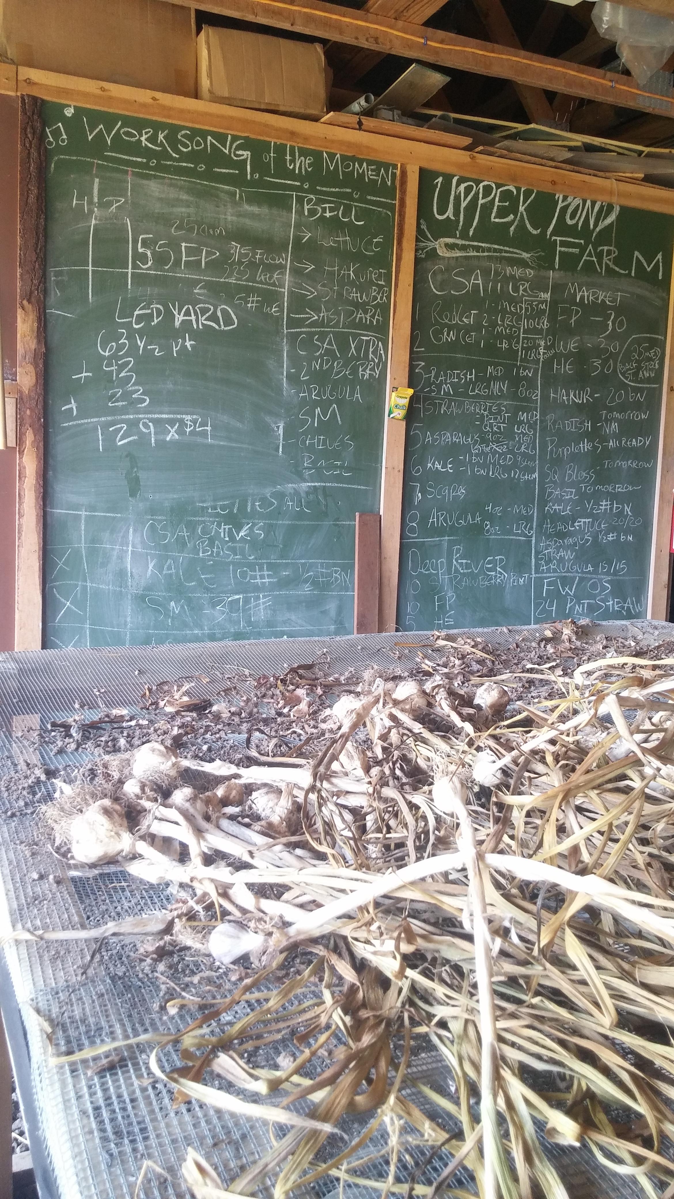 Farm Board.jpg