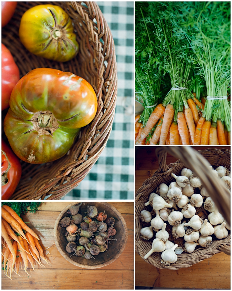 JASMINE_TARA_PHOTOGRAPHY_farm collage.jpg