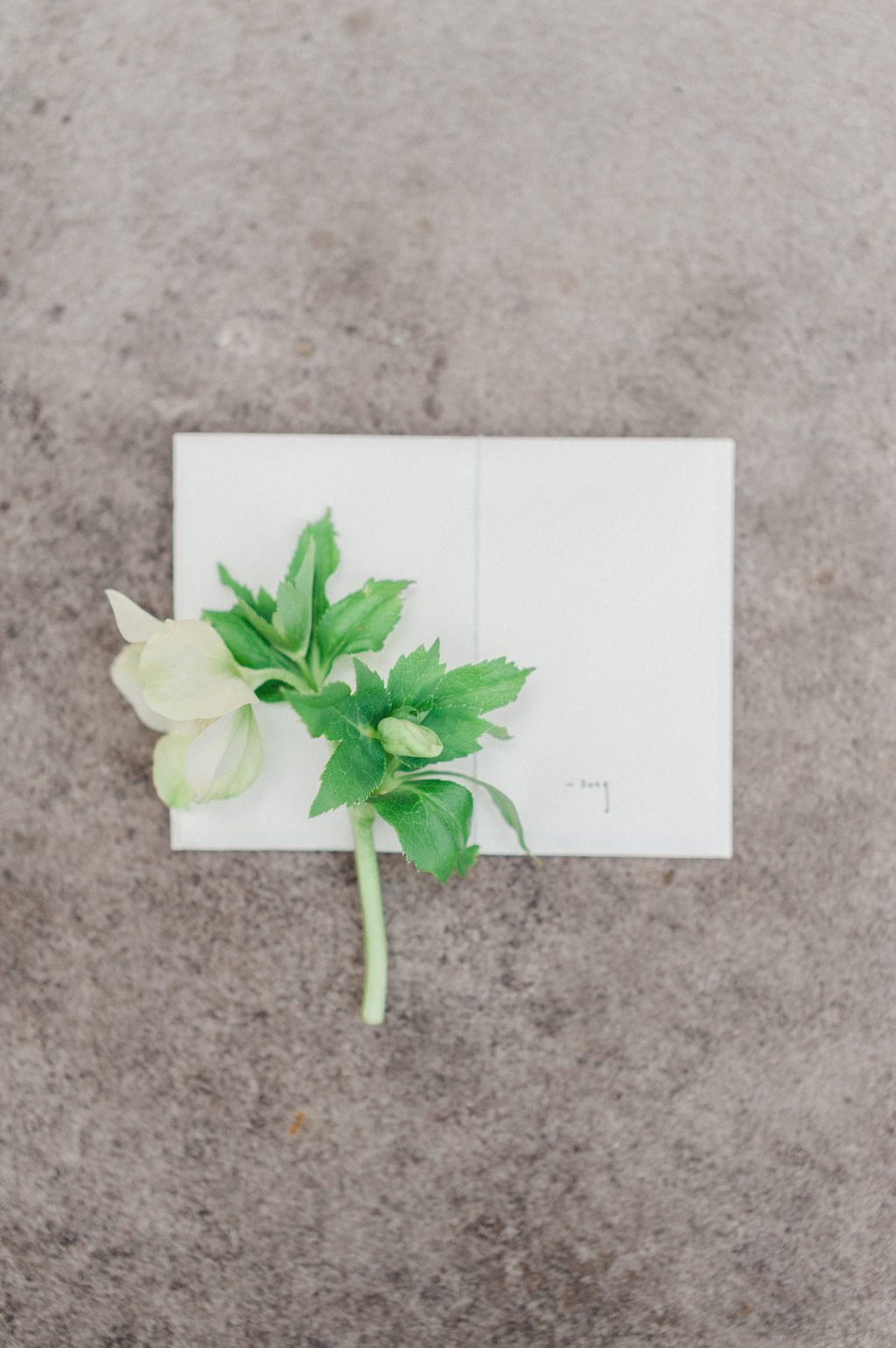 swan-house-atlanta-wedding-photographer-hannah-forsberg-1.jpg