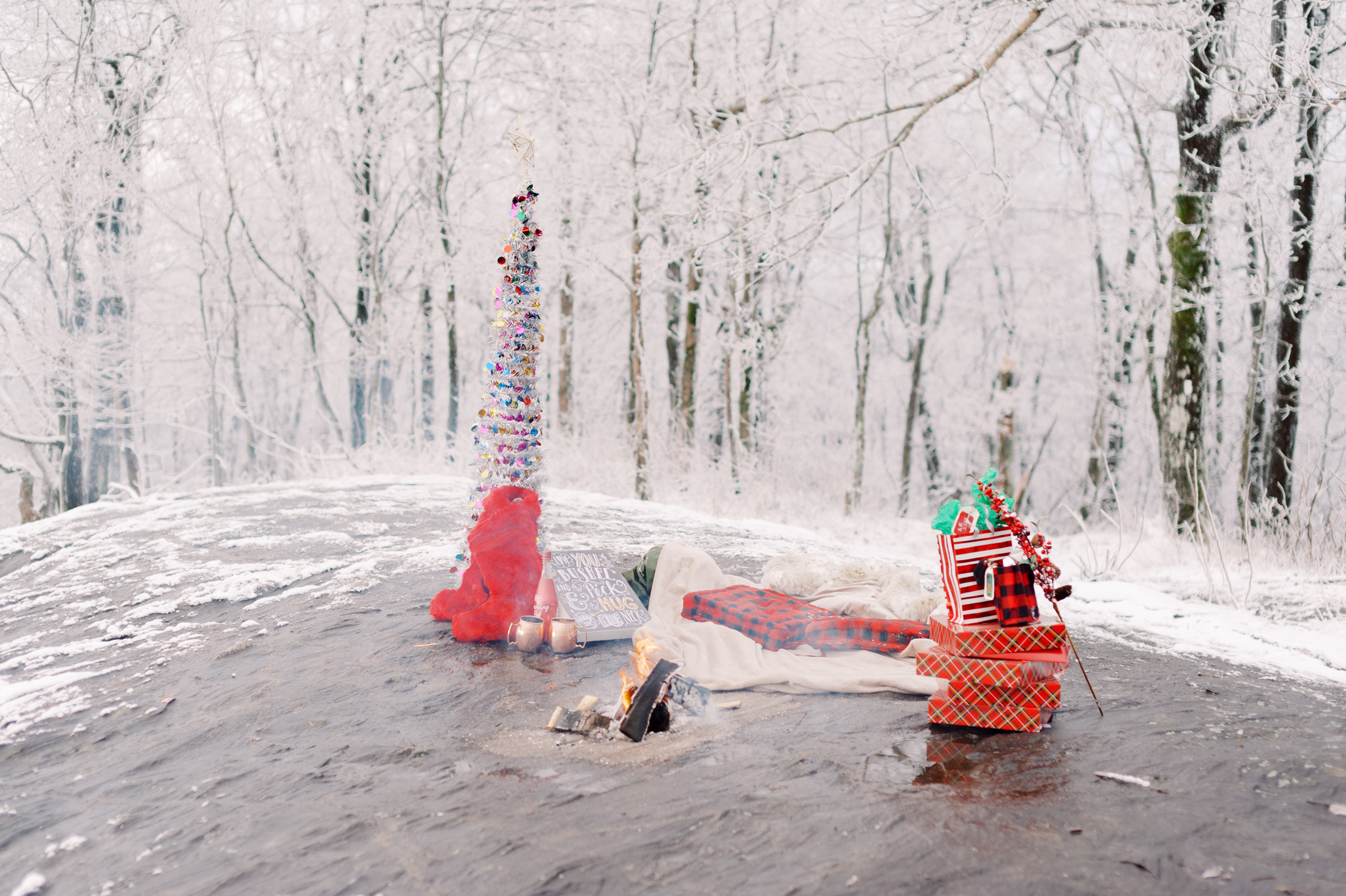 snowy-georgia-proposal-preachers-rock-atlanta-dahlonega-wedding-photographer-hannah-forsberg-fine-art-film-38.jpg
